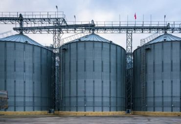 السورية للحبوب: خطوات جديدة في حل مشكلة تخزين القمح