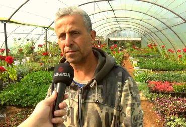 بعد نجاحه في زراعة المتة .. مزارع يُنتج ثمار القهوة والشوكولا الطبيعية في الساحل السوري (فيديو)