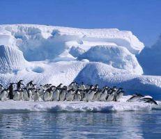 حرارة المحيطات سجلت رقما قياسيا في 2018 وخطر يهدد الحياة البحرية
