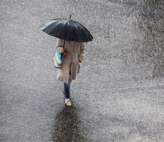 7 أمراض شائعة خلال موسم الأمطار