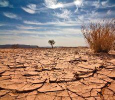 «فاو»: الدول العربية تواجه طوارئ مائية وتحتاج إلى اتخاذ إجراءات عاجلة