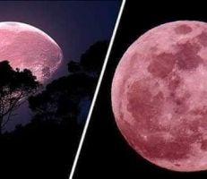 سكان الأرض على موعد مع ظاهرة القمر الوردي غذاً