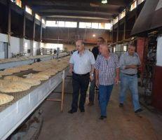 جولة تفقدية للاطلاع على الواقع التمويني في أسواق ومخابز دمشق