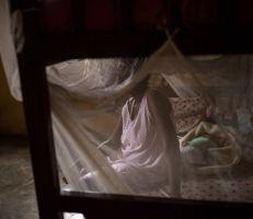 الشرطة النيجيرية تداهم مصنعاً لتوليد وبيع الأطفال في نيجيريا وتحرر 19 امرأة