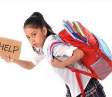 """""""العزب"""" تشكيل لجنة وزارية لإيجاد حلول للحد من ثقل الحقيبة المدرسية"""