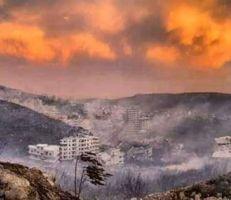 لقمة الفقراء تحترق فمن يقف خلف اشتعال الغابات في سورية؟