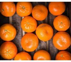 البرتقال اليوسفي: فوائد كثيرة للصحة وللجمال