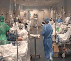 طبيب ومخترع سوريين يقترحان برتوكول علاج فعال للتخلص من كورونا