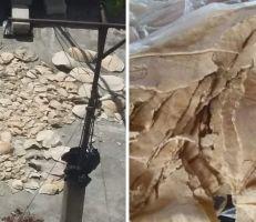 خبز اللاذقية .. من الأفران لأسطح المنازل إلى معالف الحيوانات!