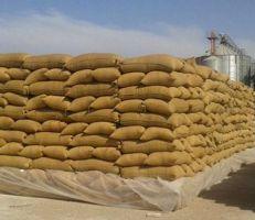 السورية للحبوب: شهادة المنشأ شرط لدفع أجور نقل القمح للفلاحين في الرقة