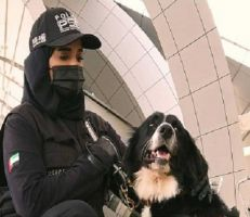 الكلاب البوليسية تساعد فى مكافحة كورونا في الإمارات العربية