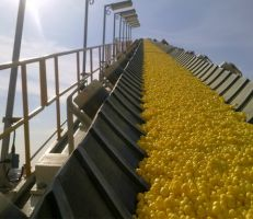 هيئة الاستثمار السورية: فرصة استثمارية جديدة لإنتاج وطحن الكبريت الزراعي