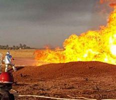 """""""ميغالو"""" و """"كروكوداي"""".. ضحيتا تفجير خط الغاز العربي في الضمير.. قصة مؤثرة.."""
