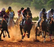 تسعة سباقات للسرعة على روزنامة الجمعية السورية للخيول العربية الأصيلة