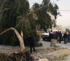عاصفة التنين تضرب مصر والأردن وتتسبب بالسيول وتعطيل القطاع العام والخاص