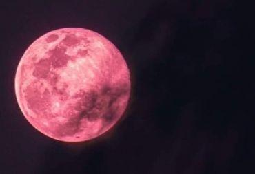 ظاهرة فلكية نادرة.. القمر باللون الزهري في 26 نيسان الجاري