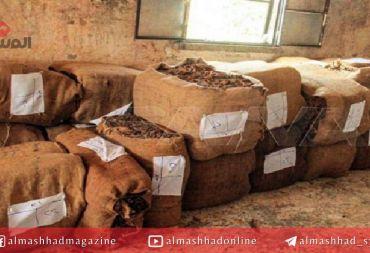 الفساد يُهيمن على مؤسسة التبغ .. سماسرة بالمؤسسة يشترون من الفلاح بضعف تسعيرة الدولة!!