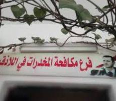 القبض على أكثر من ٣٠ شخصاً بتهم المخدرات في اللاذقية