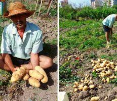 """مواطن لوزير الزراعة: """"الله يلعن اللي دمروا الزراعة والاقتصاد الوطني"""""""