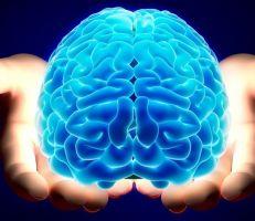 سبع طرق لإبطاء شيخوخة الدماغ