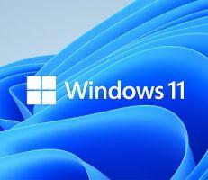 """شركة مايكروسوفتتطلق نظام التشغيل """"ويندوز 11"""" الذي يدعمتشغيل تطبيقات أندرويد"""