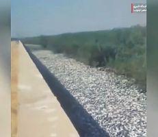 بسبب الجفاف نفوق آلاف الأسماك في نهر بإيران (فيديو)
