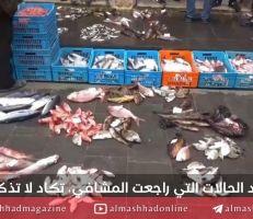 طرطوس: كيف أثرت حادثة تسرب الفيول على سوق السمك؟!
