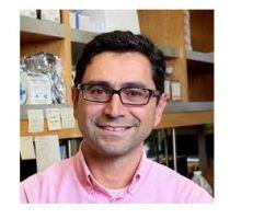 أردم باتابوتيان: لبناني المولد يفوز بجائزة نوبل في الطب لعام 2021