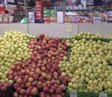 السورية للتجارة تغذي صالاتها بالخضراوات .. مواطنون: الأصناف عديدة والأسعار مشابهة للأسواق (فيديو)