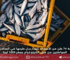 تقرير تفتيشي يكشف حالة فساد .. السورية للتجارة باعت عشرات أطنان السمك للتجار بدل المواطنين