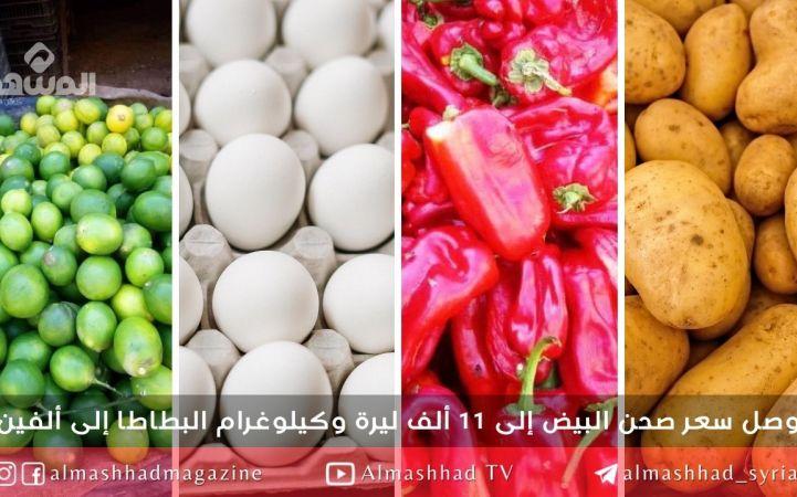 صدارة دوري الأسعار في أسواق ديرالزور للبيض والبطاطا